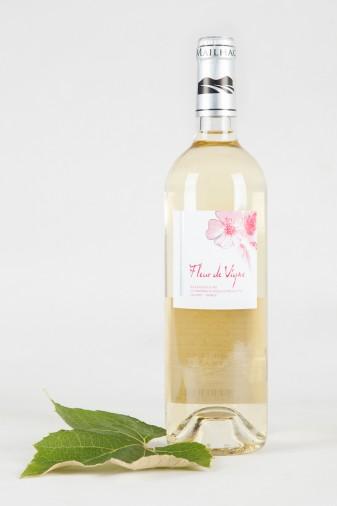 Vin d'Oc | Exclusieve wijnen uit de Languedoc | Fleur de Vigne